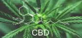 Nově objevené kanabinoidy překvapily svými účinky