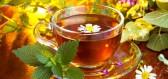 Proč je pití bylinných čajů prospěšné našemu tělu?