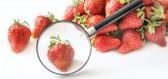 Ovoce a zelenina plná pesticidů. Letos vede špenát, těsně za ním následují oblíbené jahody.