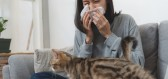 Alergie na kočky představuje vážný problém, nová vakcína slibuje řešení