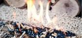 Biomasa a bioodpad: jak vydělat na zpracování organických surovin?