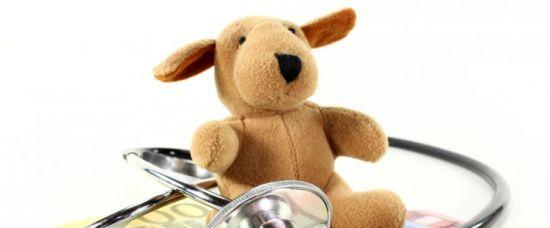 Zvířata, která pomáhají léčit