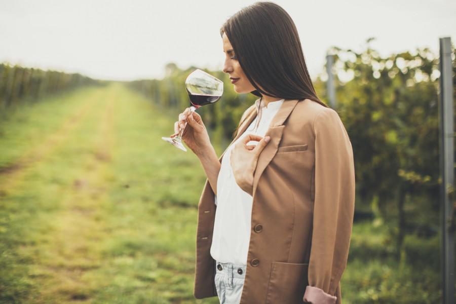 Nejlépe chutná víno přímo ve vinohradu